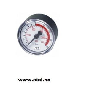 "Manometer Ø50 1/4"" 0-10 Bar"